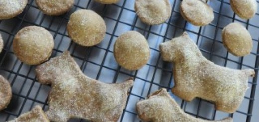 Pumpkin Peanut Butter Dog Biscuit Recipe 003 (Mobile)